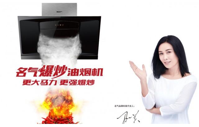 名气厨房电器企业宣传片 (7播放)